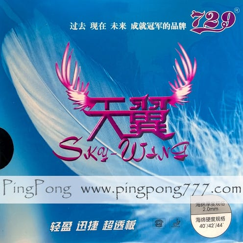 Friendship 729 Sky Wing